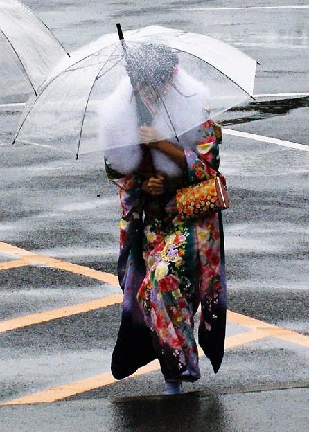 夜目、遠目、傘の内