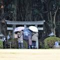 写真: 雨の日の参拝