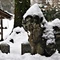 酒垂神社狛犬