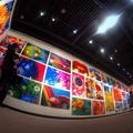 静岡県立美術館 「蜷川実花展」(3)