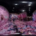 静岡県立美術館 「蜷川実花展」 360度パノラマ写真(3)