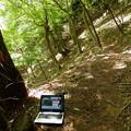 宮ヶ瀬湖 春の木丸ハイキングコース