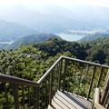 仏果山展望塔階段