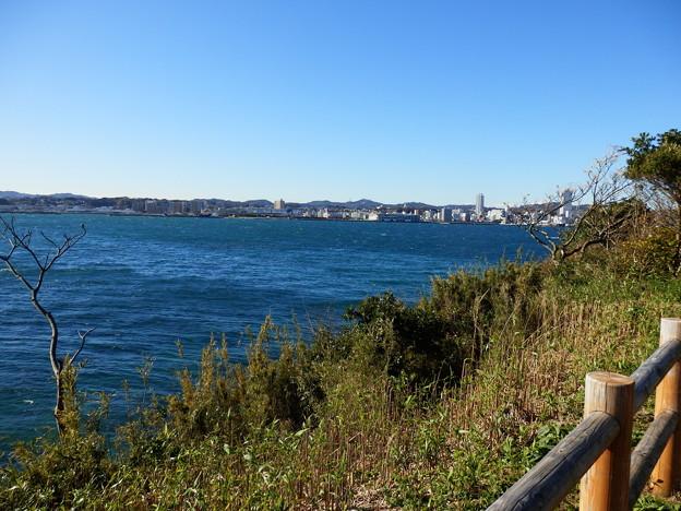 猿島から横須賀港方向