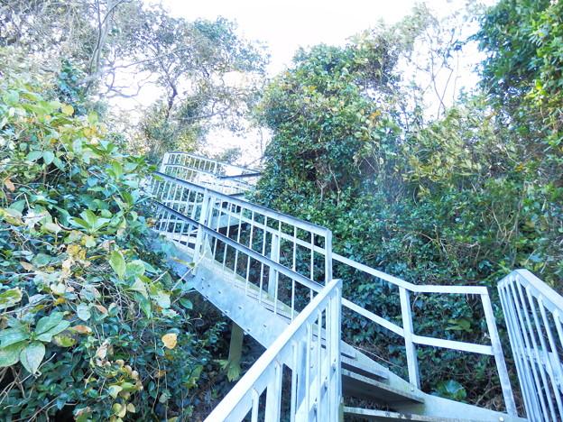 北側の海岸に降りる階段
