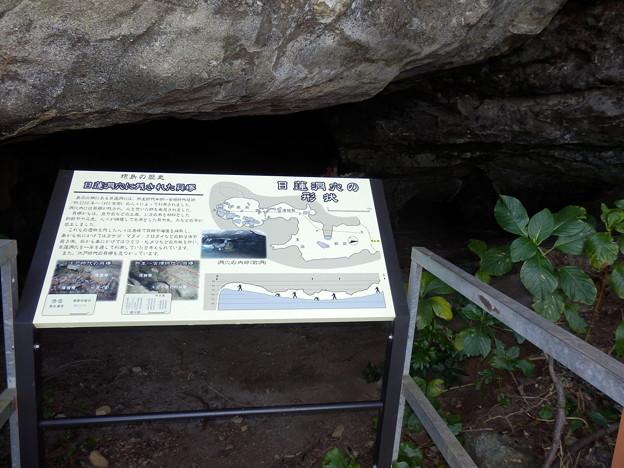 日蓮洞穴(入れませんが)