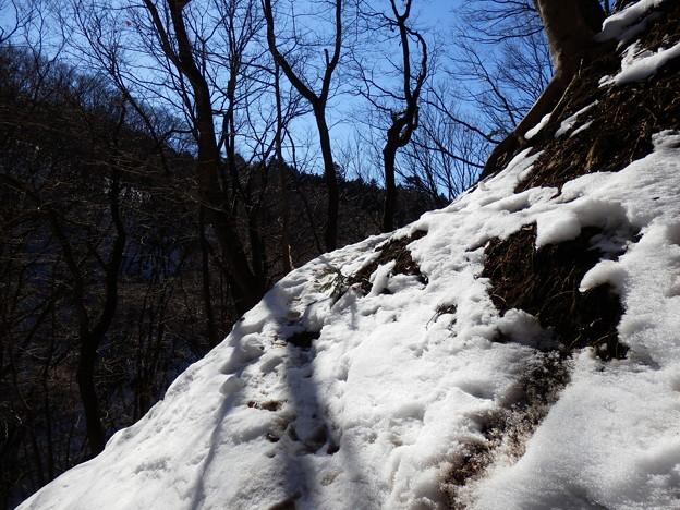 斜面によって残雪の量がバラバラ
