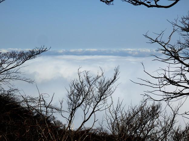 まさかの大山から雲海^^