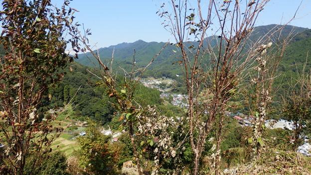 仏果山方向