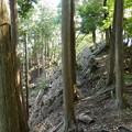 普通の登山道と違って踏み跡が決まってないから歩くの難しい^^