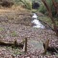 Photos: 確かに水の流れがある