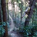 Photos: この急な階段を上れば泰光寺山・・・