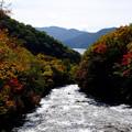 龍頭の滝橋からの紅葉を眺望