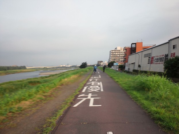 写真: 110802 多摩川サイクリングロード