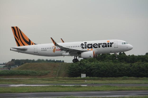 タイガーエア台湾 エアバスA320-200 B-50001