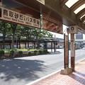 Photos: 鳥取駅北口バスのりば