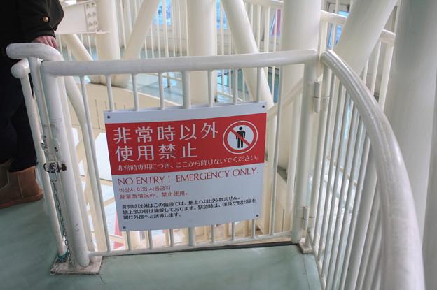 神戸ポートタワー展望台 IMG_123103