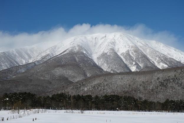 09.春小谷付近から見た真冬の岩手山