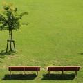 Photos: 座りたい