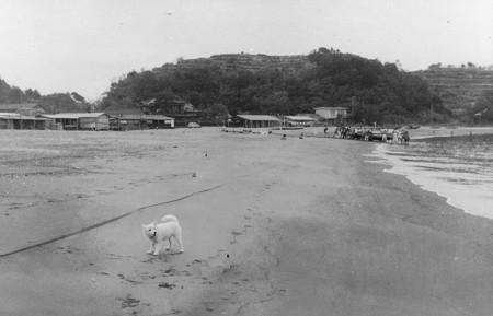 totoro beach-poru