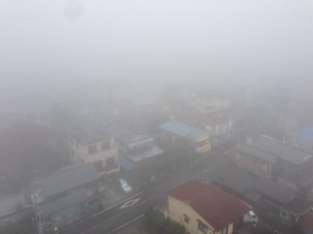 今朝はすごい靄