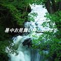 竜頭の滝(4)
