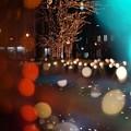 光のしずく シンボルツリー