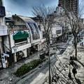 写真: 午後のパセオ通り
