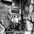 写真: 自転車のある風景