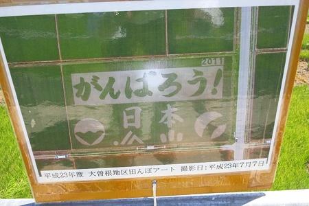 新潟市西蒲区大曽根の田んぼアート(航空写真)