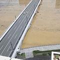 写真: 水害で水が茶色い信濃川と萬代橋(1)