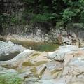 Photos: 8月10日「渓谷の涼」