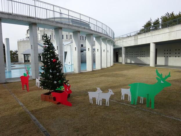 クリスマスカラーのトナカイ