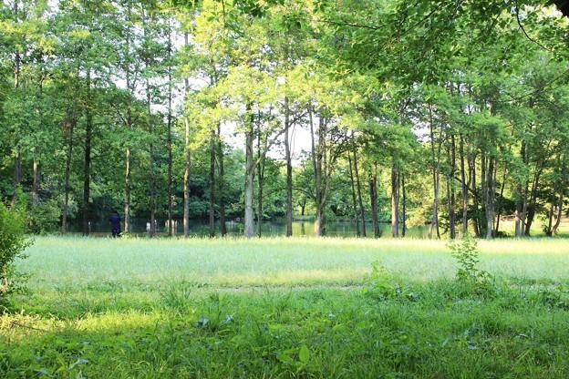 緑の癒される空間の中で・・・
