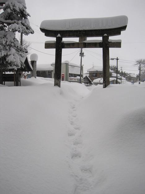 2011冬の旅 018