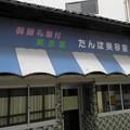 Photos: 田んぼを探訪