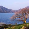 中禅寺湖の朝