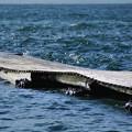 写真: 波の戯れ/オールドレンズ
