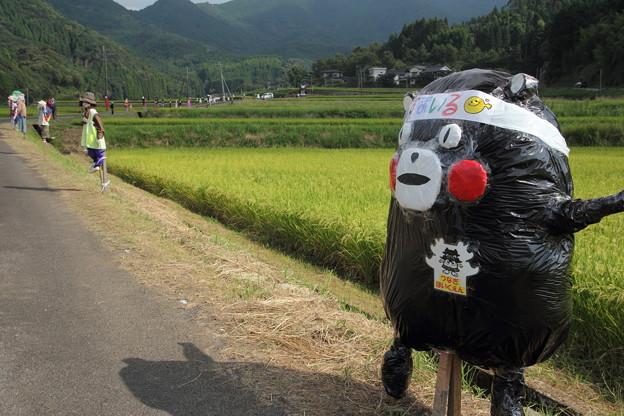 津奈木町かかし祭り・・小さいほうのくまモン