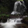 Photos: 魅力的な錦見の滝