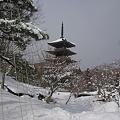 写真: 五重塔・雪の季節