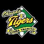 大和田タイガース1A