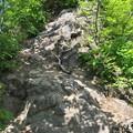 写真: 岩登り