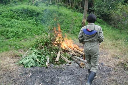 竹の焼却作業