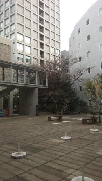 早大戸山キャンパス