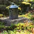 Photos: 神蔵寺15