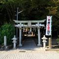 写真: 篠村八幡宮01