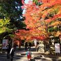 写真: 鍬山神社78