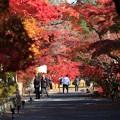 Photos: 鍬山神社76