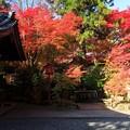 Photos: 鍬山神社75